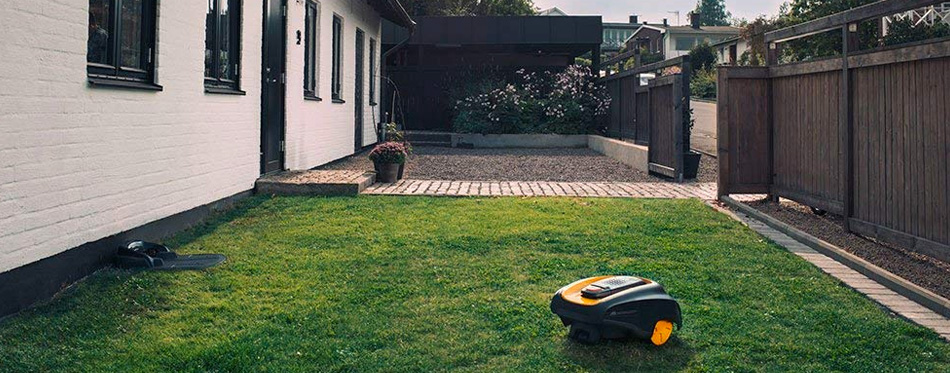 lawn mower on the green grass