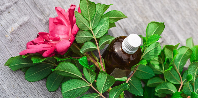 essential oil and flower
