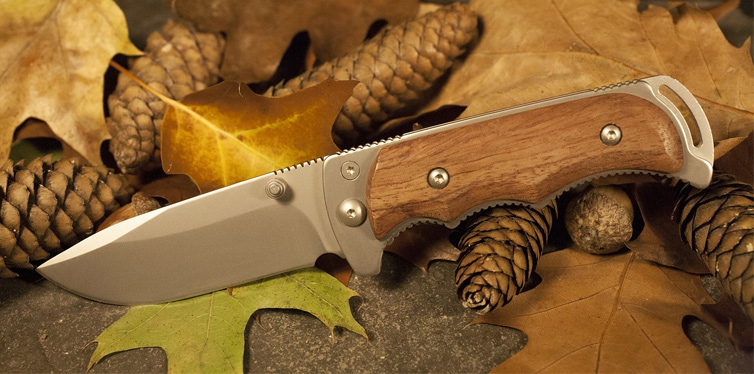 a knife in leaves
