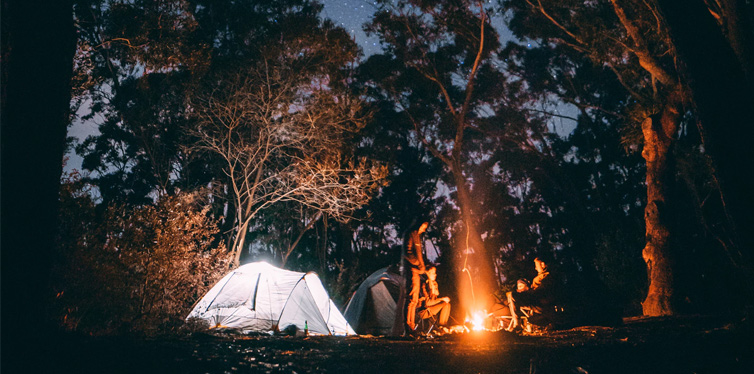 camping brands