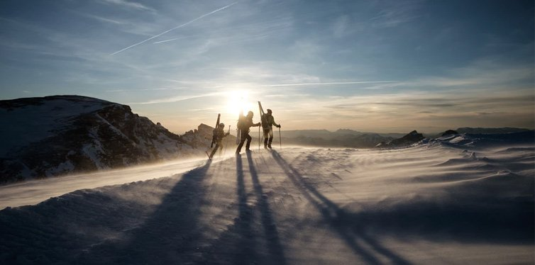skiers on snow