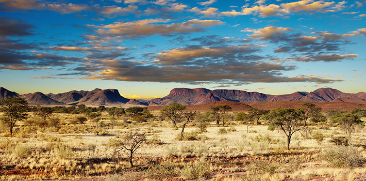 kalahari desert, africa