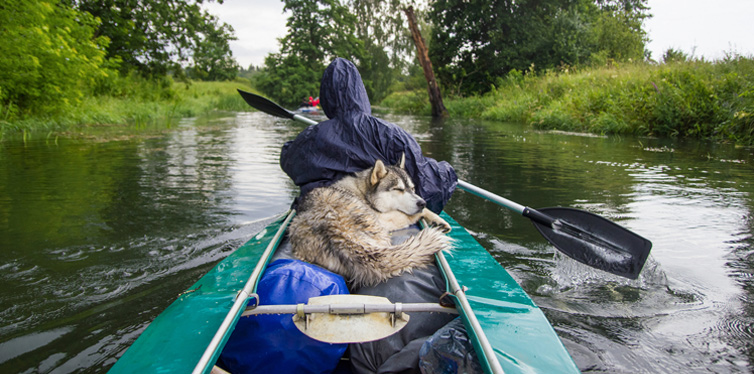 kayaking with the dog