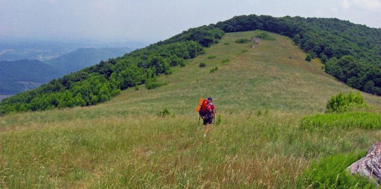 apalachian trail