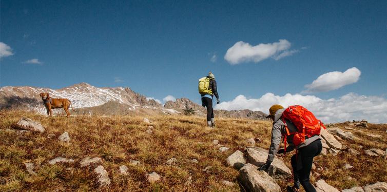 hikers climbing