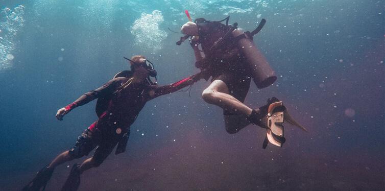 people swimming underwater