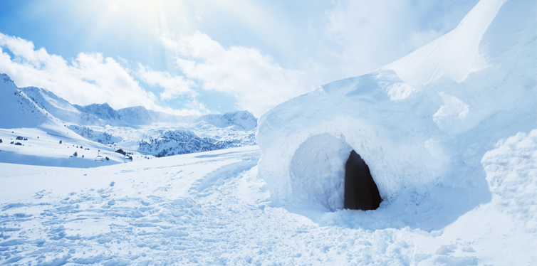 shelter in snow