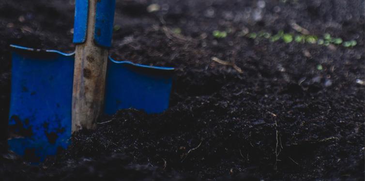 shovel on the soil