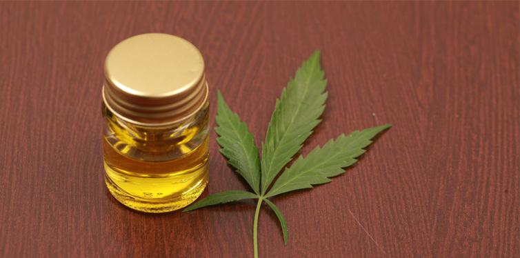 cannabis leavs and oil cbd