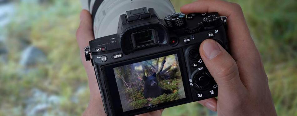 best mirrorless camera