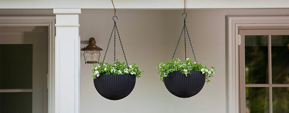 two hanging planters