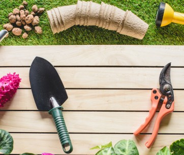 10 Gardening Tools Everyone Needs