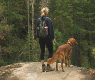10 Great Tips For Hiking With Your Dog