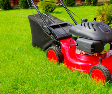 10 best push mowers review in 2019