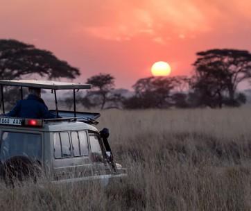 10 best safaris in africa