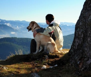 15 awesome things you can do with your dog