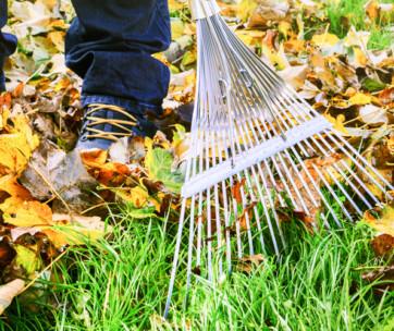 15 useful home maintenance tips for the fall season