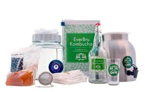 northern brewer everbru kombucha starter kit