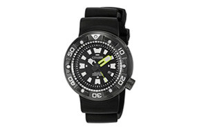 promaster diver citizen watch