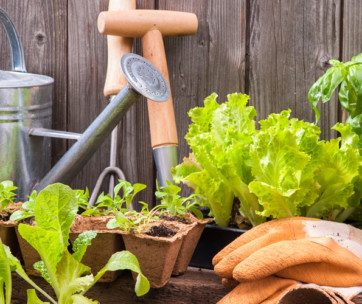 20 habits of successful gardeners