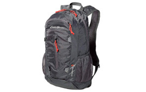 eddie bauer stowaway packable day pack