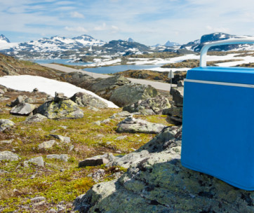 7 best coolers for camping