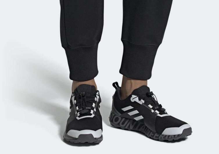 Adidas Terrex_WM Two GTX Shoes