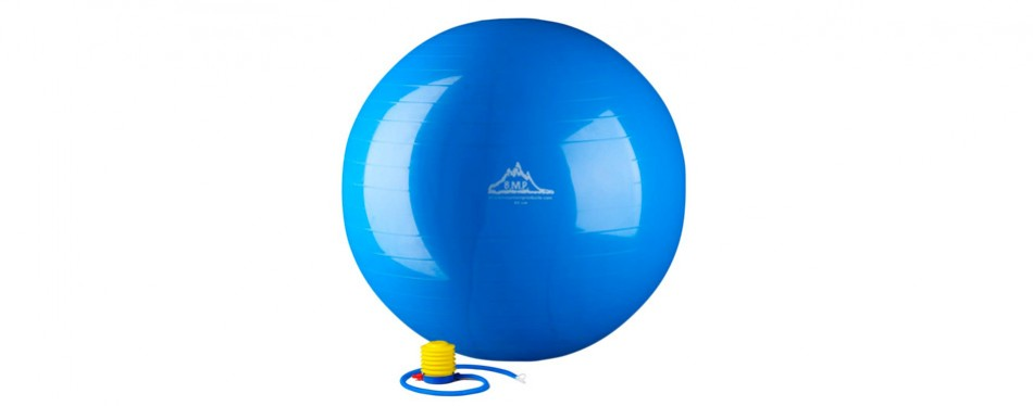 Black Mountain Exercise Ball
