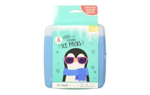 fit & fresh cool coolers freezer packs slim ice pack for lunch box