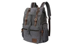 lifewit casual day backpack