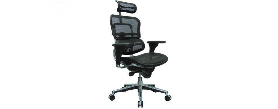 Ergohuman High Back Swivel