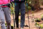Evocrest Carbon Fiber Trekking Pole