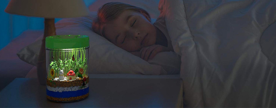 Mini Explorer Light-up Terrarium Kit - Educational Toy
