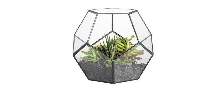 modern tabletop geometric terrarium