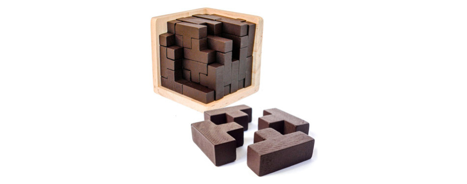 Sharp Brain Zone - 3D Wooden Brain Teaser Puzzle