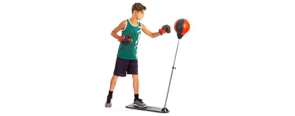 Tech Tools Boxing Ball Set