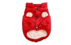 joydaog warm dog jacket