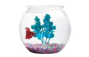koller products panaview globe fish bowl