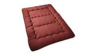 maxtoto japanese floor futon