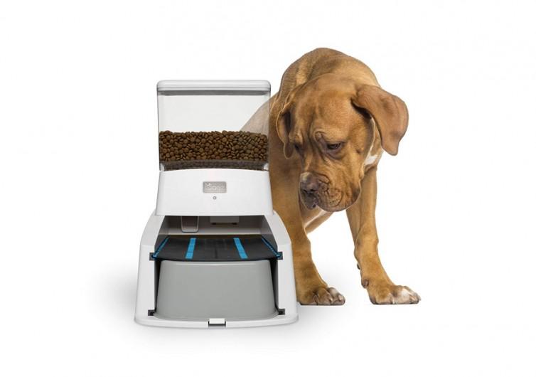 Wagz Smart Dog Feeder