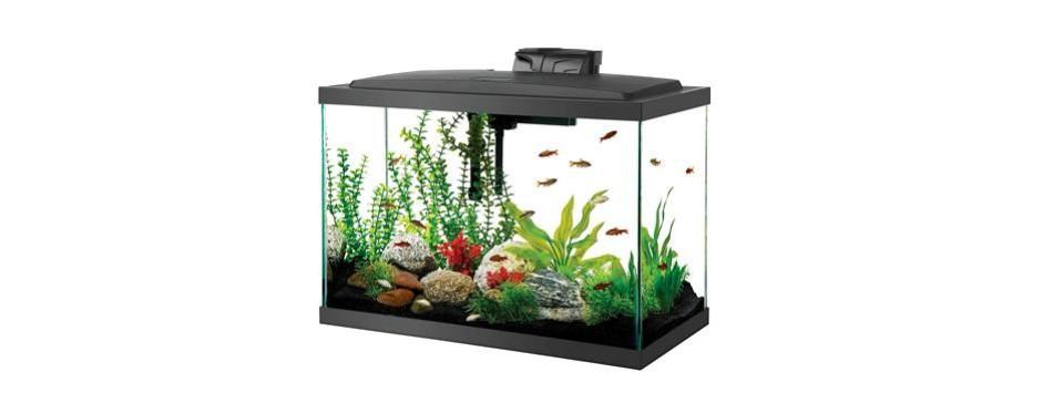 aqueon aquarium fish tank kit