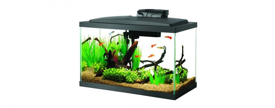 aqueon aquarium fish tank starter kits