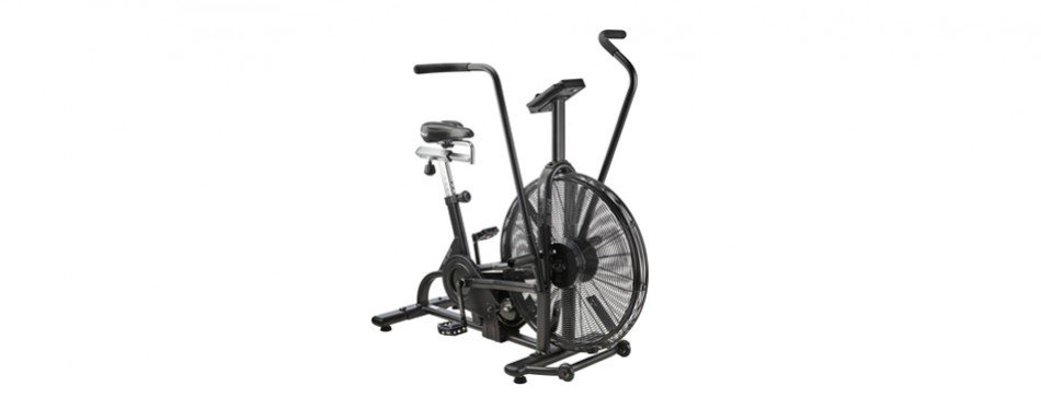 assault fitness assault airbike