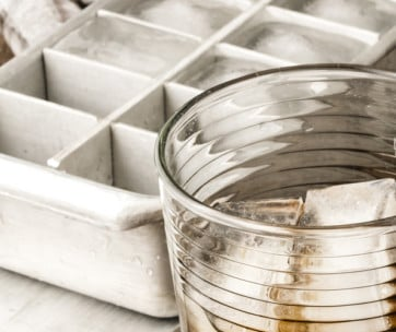 20 Coolest Ice Cube Trays