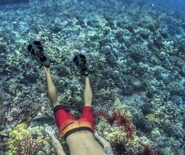 best snorkeling fins