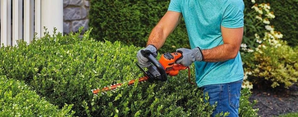 black+decker beht100 hedge trimmer