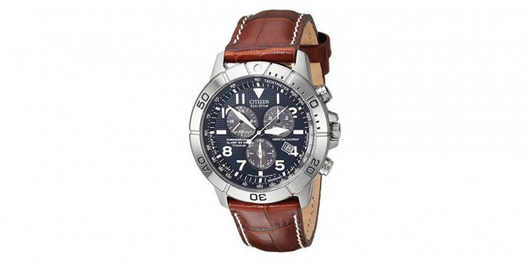 Citizen Men's Eco-Drive Titan