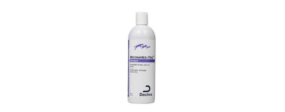 dechra miconahex + triz pet shampoo