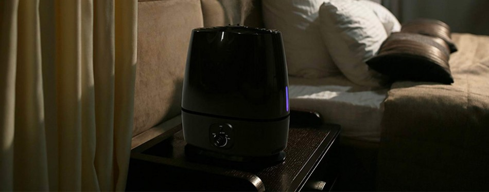 everlasting comfort ultrasonic high mist output humidifier