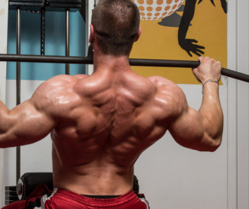 exercises to strengthen up your back